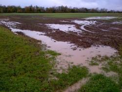2000 hectare landbouwgrond vernield door boeren zelf