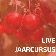 Live Jaarcursus