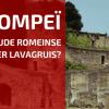 Lavagruis Toedienen: Hoeveel en Wanneer?