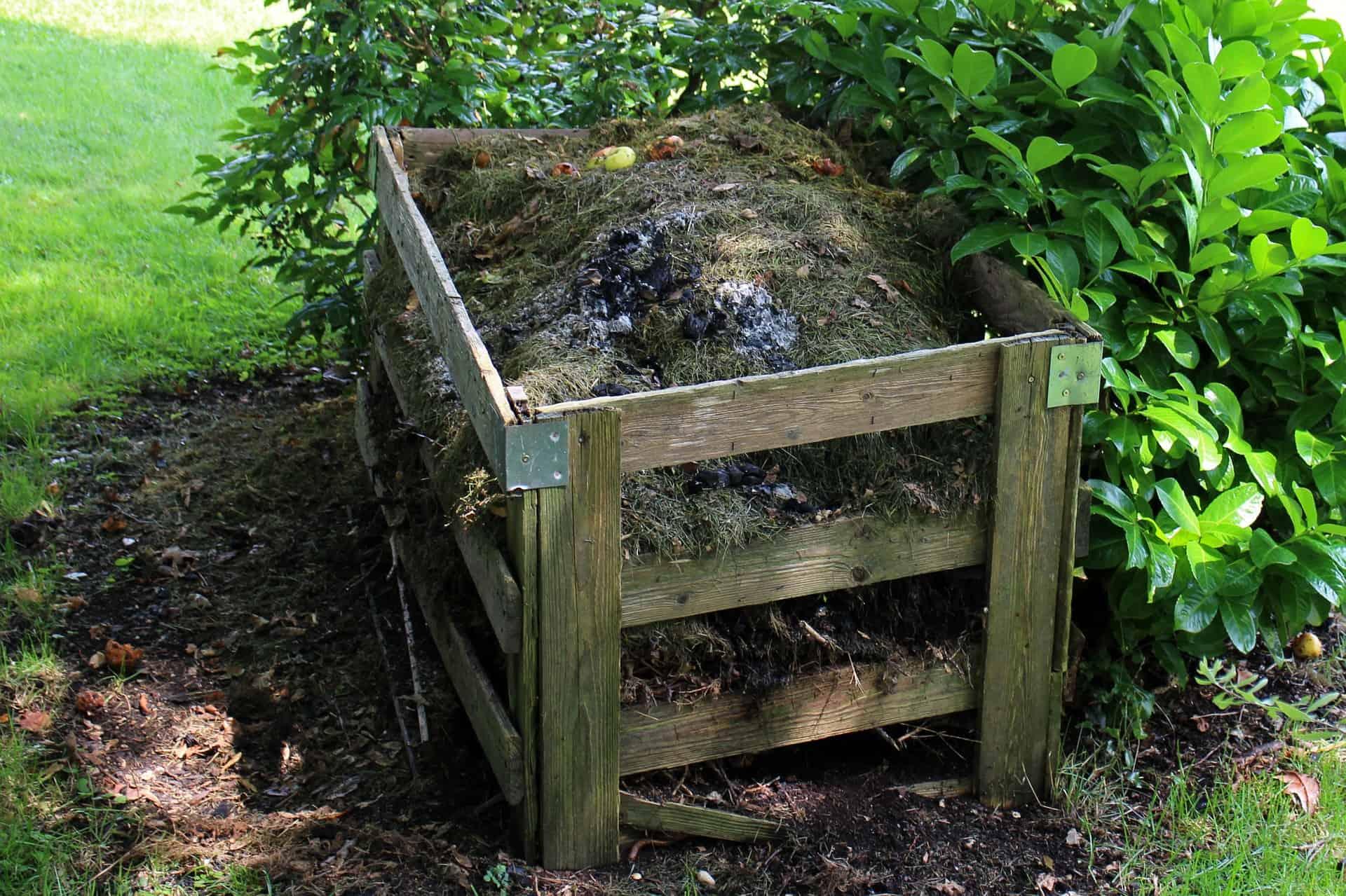 compost-4192591920