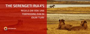 The Serengeti Regels: Van Toepassing in Jouw Tuin?