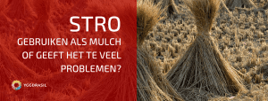 Stro Als Mulch: Enkel Voordelen?