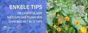 Een Reeks Tips om de Essentie van Natuurlijk Tuinieren Samen te Vatten