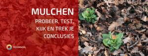 Mulchen: Experimenteer en Leer