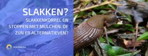 Een Definitieve Oplossing Voor Slakkenproblemen?